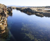 Snorkeling tour in Iceland Silfra